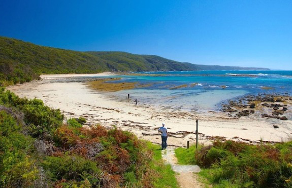 Great Otway National Park Australia: Top 10 Things to Do
