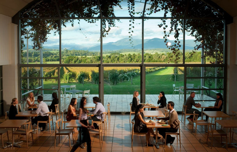 Yarra Valley Wineries The Top 10 To Visit